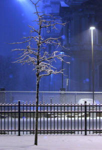 ice melt and deicing products